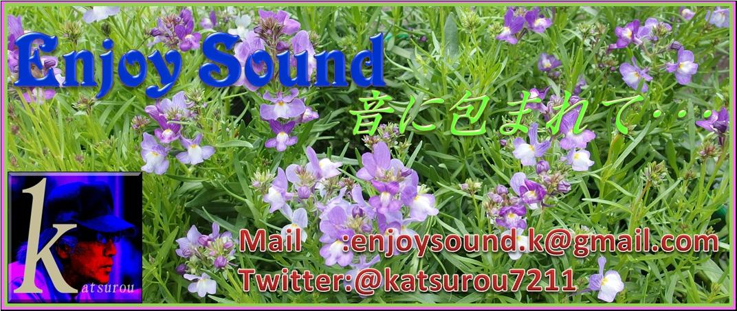 Enjoy Sound k